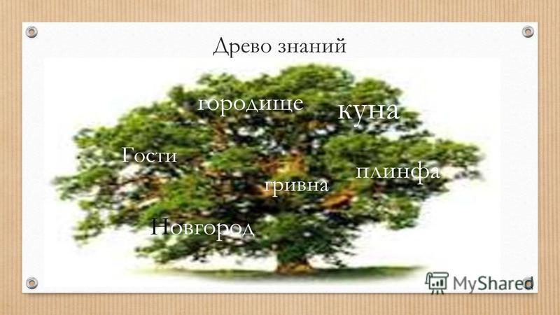 Древо знаний куна городище гривна Гости плинфа Новгород