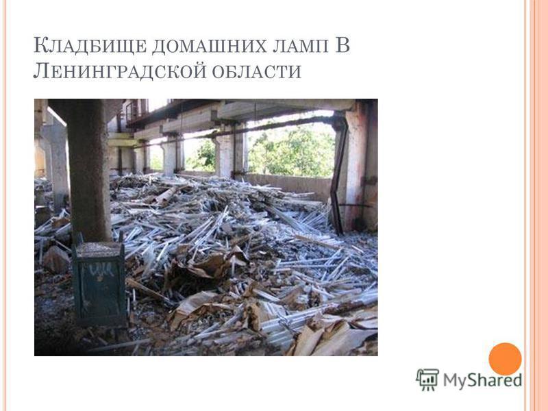 К ЛАДБИЩЕ ДОМАШНИХ ЛАМП В Л ЕНИНГРАДСКОЙ ОБЛАСТИ