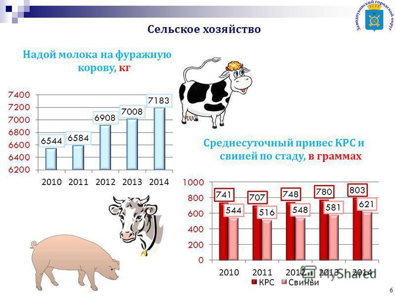 6 Надой молока на фуражную корову, кг Среднесуточный привес КРС и свиней по стаду, в граммах