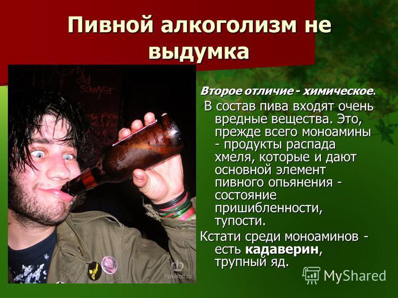 Пивной алкоголизм не выдумка Второе отличие - химическое. В состав пива входят очень вредные вещества. Это, прежде всего моноамины - продукты распада хмеля, которые и дают основной элемент пивного опьянения - состояние пришибленности, тупости. В сост
