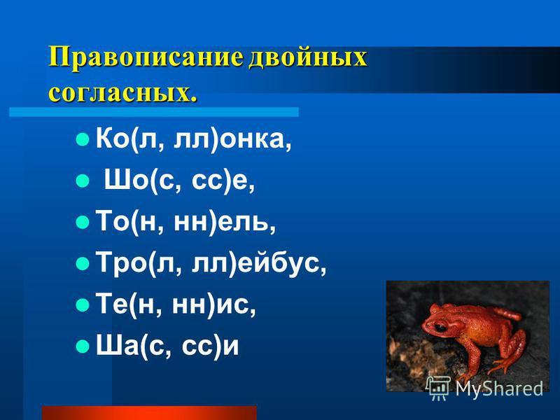 Правописание двойных соглавсных. Ко(л, л)анка, Шо(с, сс)е, То(н, н)ель, Тро(л, л)ейбус, Те(н, н)ис, Ша(с, сс)и