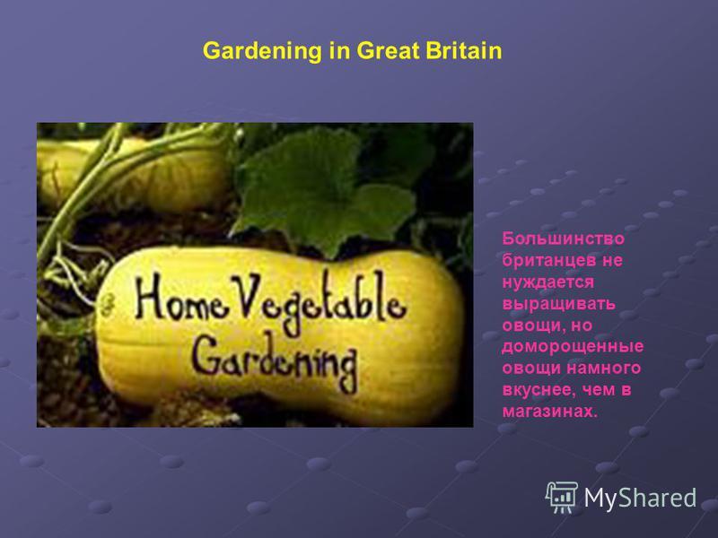Gardening in Great Britain Большинство британцев не нуждается выращивать овощи, но доморощенные овощи намного вкуснее, чем в магазинах.