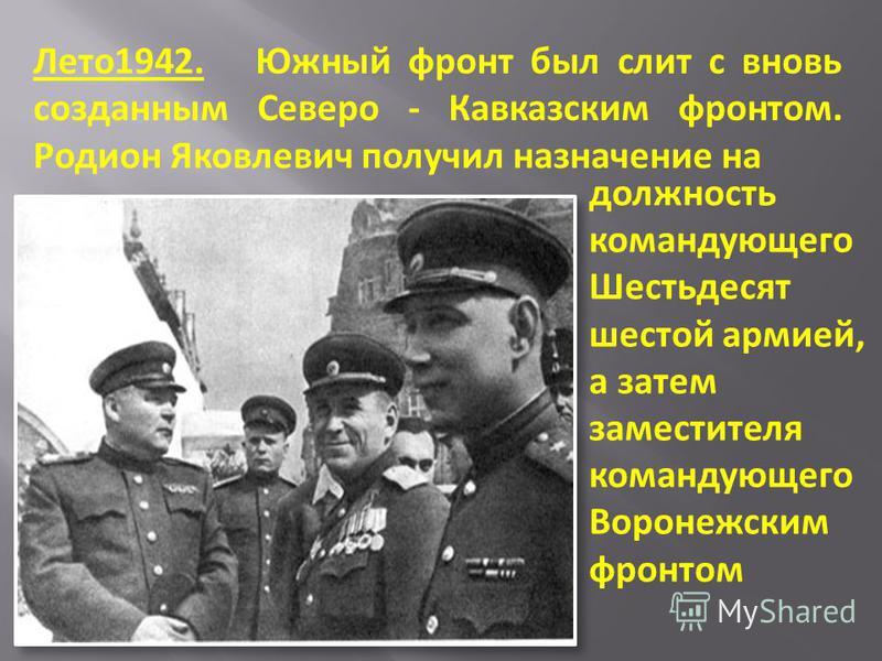 должность командующего Шестьдесят шестой армией, а затем заместителя командующего Воронежским фронтом Лето 1942. Южный фронт был слит с вновь созданным Северо - Кавказским фронтом. Родион Яковлевич получил назначение на