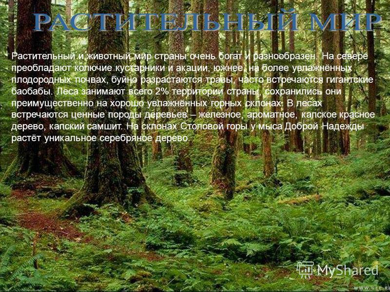 Растительный и животный мир страны очень богат и разнообразен. На севере преобладают колючие кустарники и акации, южнее, на более увлажнённых плодородных почвах, буйно разрастаются травы, часто встречаются гигантские баобабы. Леса занимают всего 2% т
