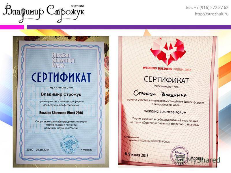 Тел. +7 (916) 272 37 62 http://strozhuk.ru