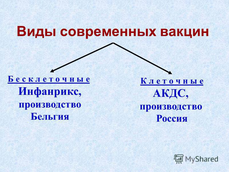 Виды современных вакцин Б е с к л е т о ч н ы е Инфанрикс, производство Бельгия К л е т о ч н ы е АКДС, производство Россия