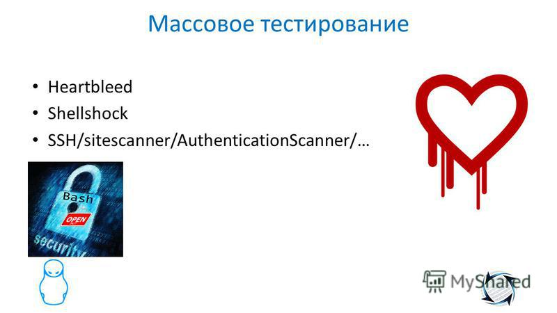 Массовое тестирование Heartbleed Shellshock SSH/sitescanner/AuthenticationScanner/…