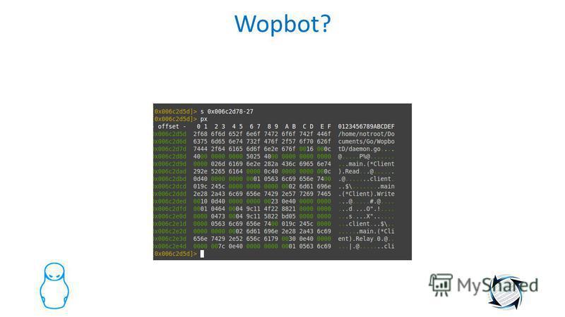 Wopbot?