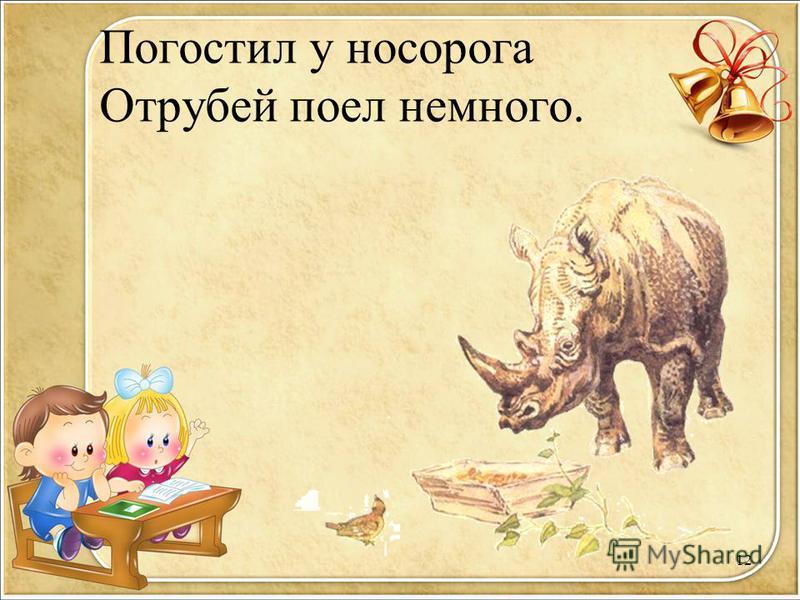 Погостил у носорога Отрубей поел немного. 12