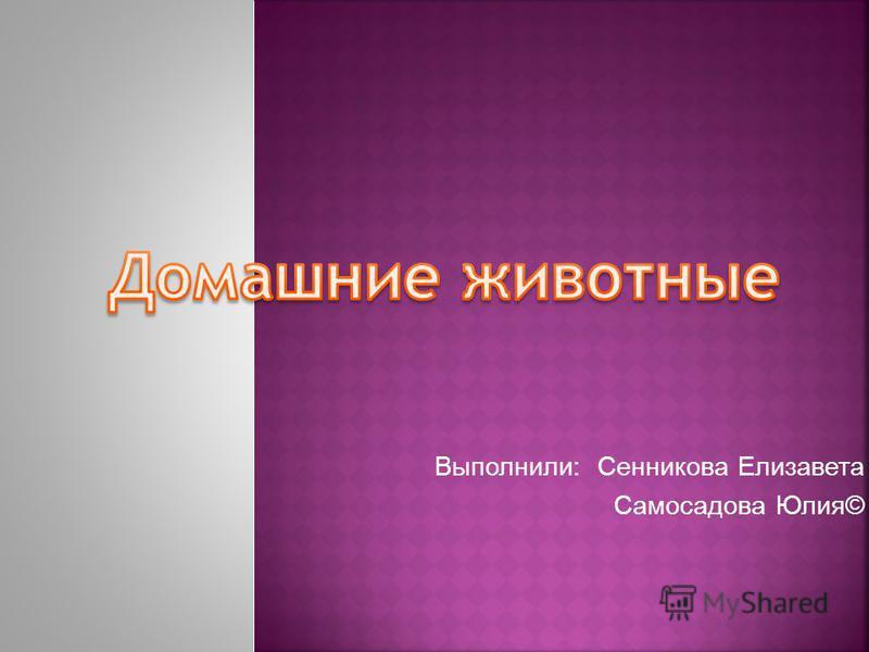Выполнили: Сенникова Елизавета Самосадова Юлия©