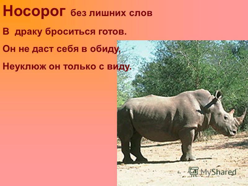 Носорог без лишних слов В драку броситься готов. Он не даст себя в обиду, Неуклюж он только с виду.