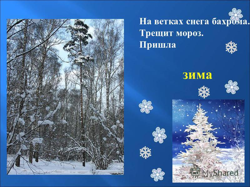 На ветках снега бахрома. Трещит мороз. Пришла зима