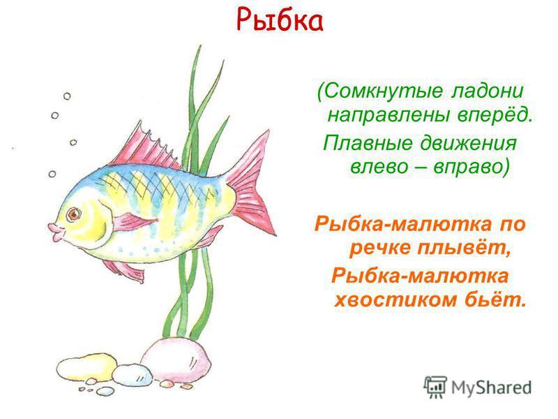 Рыбка (Сомкнутые ладони направлены вперёд. Плавные движения влево – вправо) Рыбка-малютка по речке плывёт, Рыбка-малютка хвостиком бьёт.