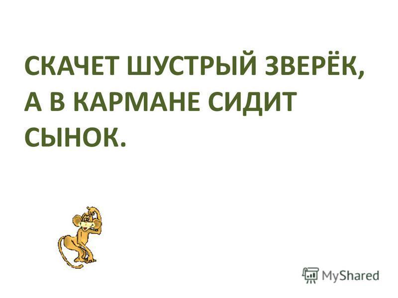 ЗАГАДКИ «ЖИВОТНЫЕ ДАЛЬНИХ СТРАН» Автор презентации Марина Шадрина