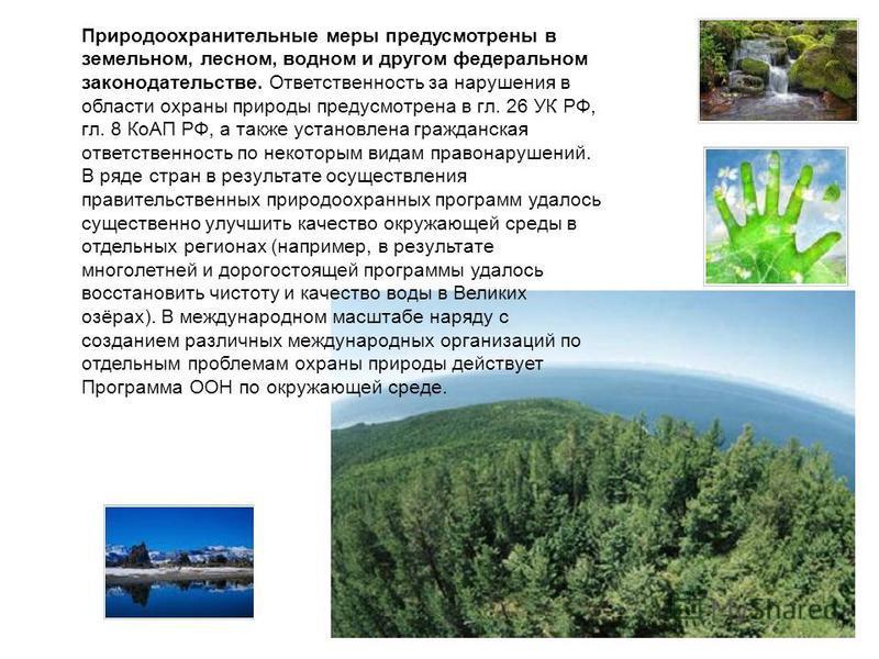 Природоохранительные меры предусмотрены в земельном, лесном, водном и другом федеральном законодательстве. Ответственность за нарушения в области охраны природы предусмотрена в гл. 26 УК РФ, гл. 8 КоАП РФ, а также установлена гражданская ответственно