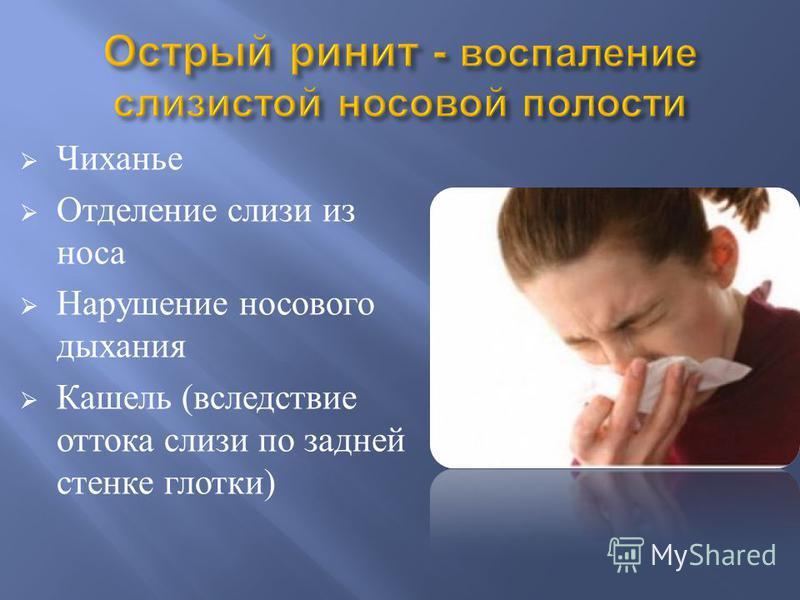 Чиханье Отделение слизи из носа Нарушение носового дыхания Кашель ( вследствие оттока слизи по задней стенке глотки )
