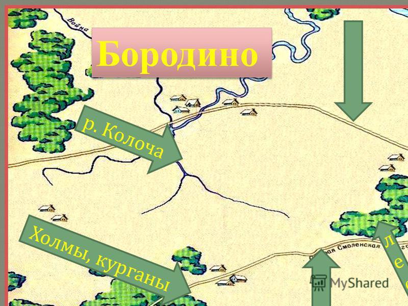 Бородино р. Колоча Холмы, курганы лес