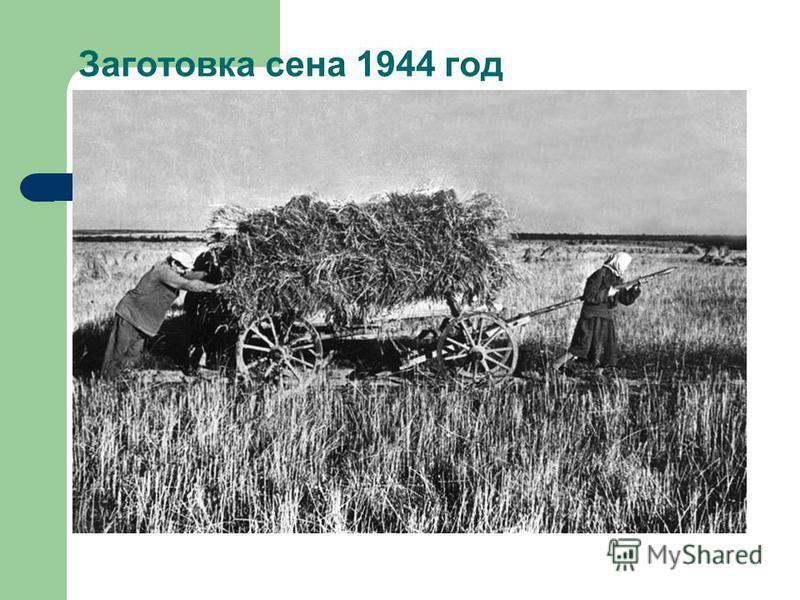 Заготовка сена 1944 год