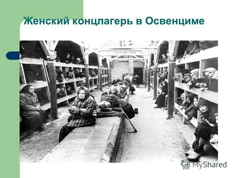 Женский концлагерь в Освенциме