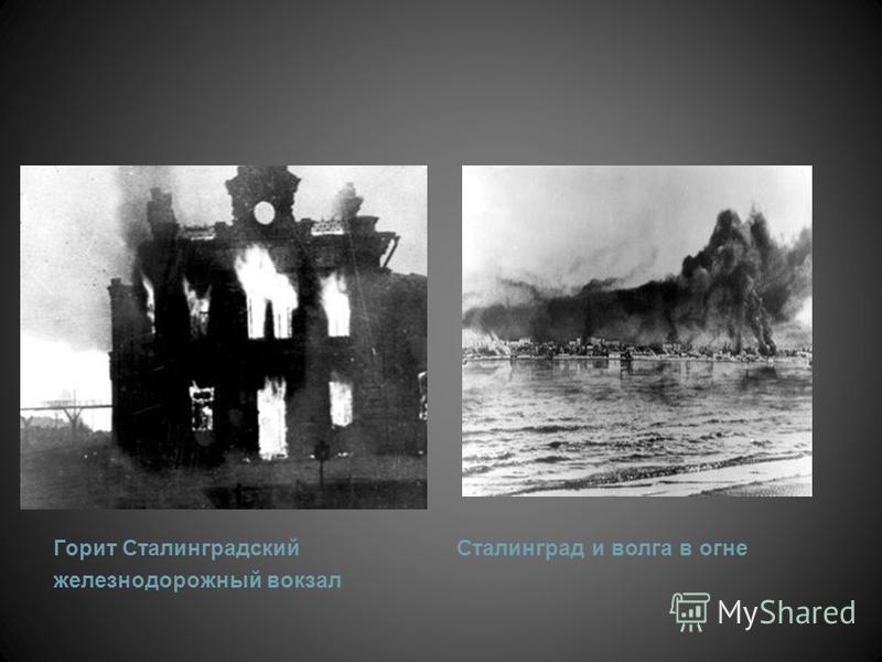 К ноябрю нацисты сровняли Сталинград с землёй. Но им не удалось сломить сопротивление сталинградцев. За три месяца, захватив часть сталинградской земли и установив на ней «новый порядок», нацисты успели повесить 108, расстрелять 1744, подвергнуть нас