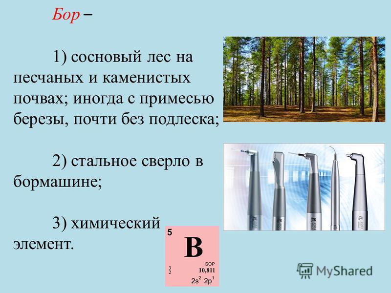 Бор – 1) сосновый лес на песчаных и каменистых почвах; иногда с примесью березы, почти без подлеска; 2) стальное сверло в бормашине; 3) химический элемент.