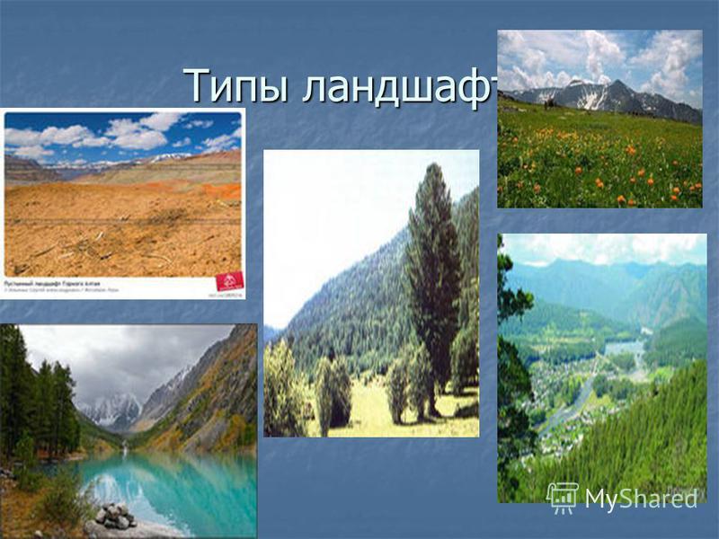 Типы ландшафта