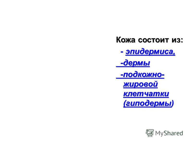 Кожа состоит из: - эпидермиса, - эпидермиса, -дермы -дермы -подкожно- жировой клетчатки (гиподермы) -подкожно- жировой клетчатки (гиподермы)