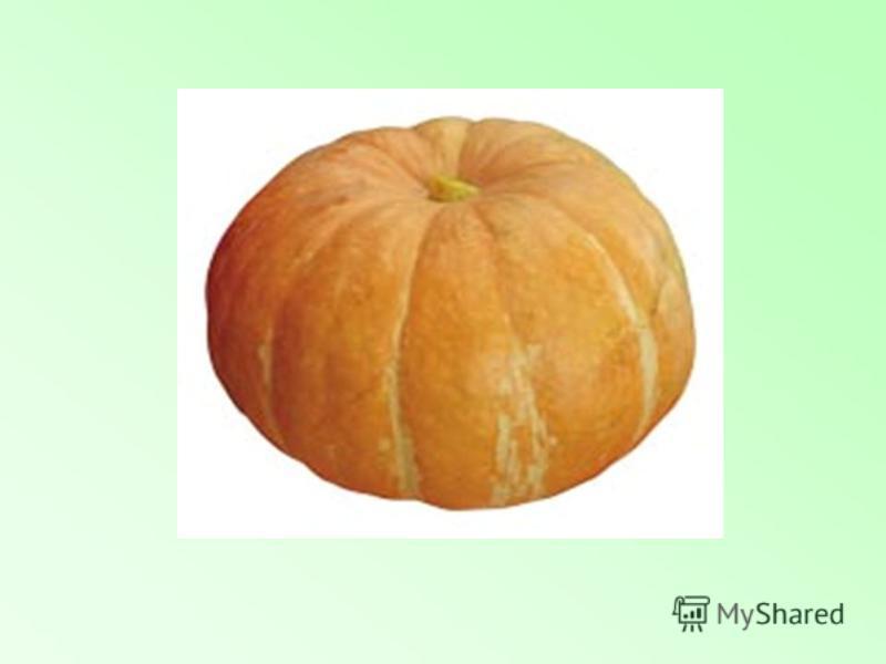 Конкурс загадок. Сказала желтая девица, Огородная царица: «Принесите-ка арбуз, С ним сравниться не боюсь».