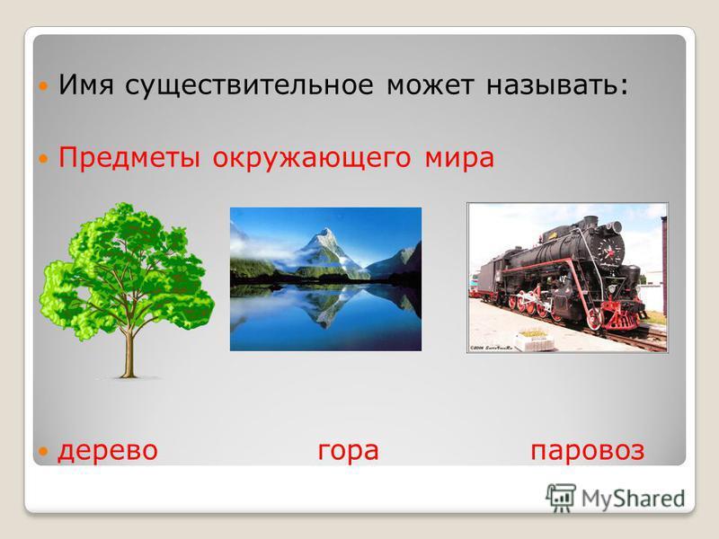 Имя существительное может называть: Предметы окружающего мира дерево гора паровоз