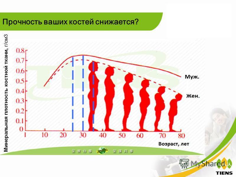 Прочность ваших костей снижается? Минеральная плотность костной ткани, г/см 3