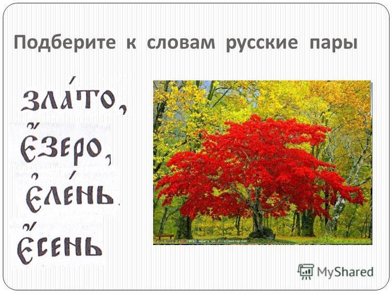 Какие из данных слов являются церковнославянскими ? дерево страж здравие Глас древо врата олань ночь брадавранкраткий гооод Русские слова исчезают.