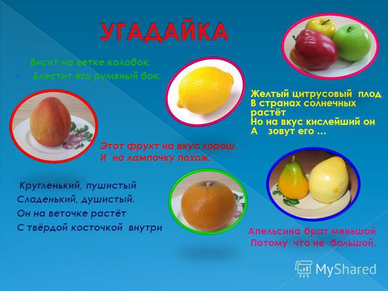 Висит на ветке колобок, Блестит его румяный бок. Этот фрукт на вкус хорош И на лампочку похож. Кругленький, пушистый Сладенький, душистый. Он на веточке растёт С твёрдой косточкой внутри Желтый цитрусовый плод В странах солнечных растёт Но на вкус ки