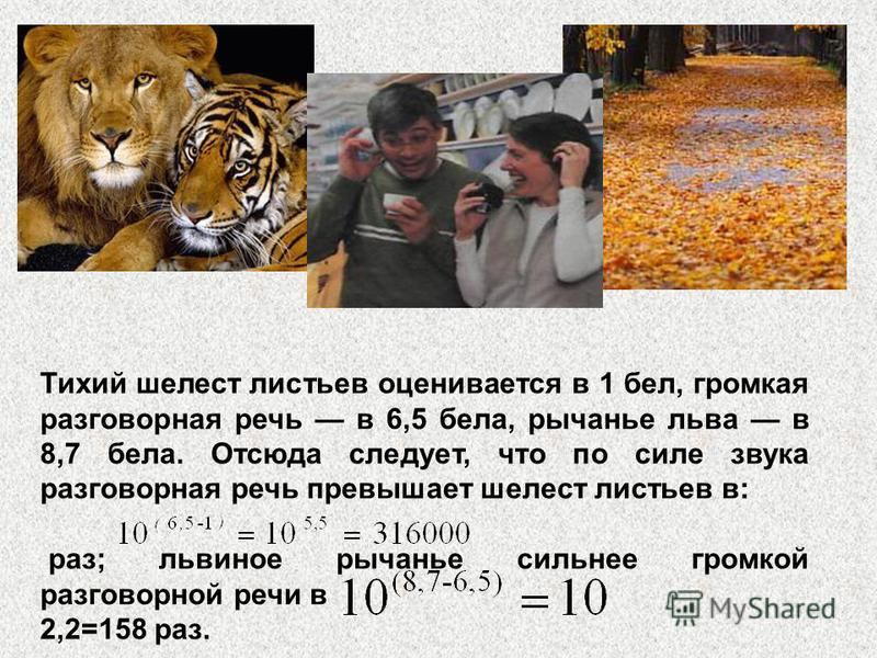 Тихий шелест листьев оценивается в 1 бел, громкая разговорная речь в 6,5 бела, рычанье льва в 8,7 бела. Отсюда следует, что по силе звука разговорная речь превышает шелест листьев в: раз; львиное рычанье сильнее громкой разговорной речи в 2,2=158 раз