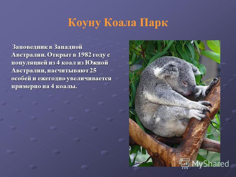 Заповедник в Западной Австралии. Открыт в 1982 году с популяцией из 4 коал из Южной Австралии, насчитывают 25 особей и ежегодно увеличивается примерно на 4 коалы. Заповедник в Западной Австралии. Открыт в 1982 году с популяцией из 4 коал из Южной Авс