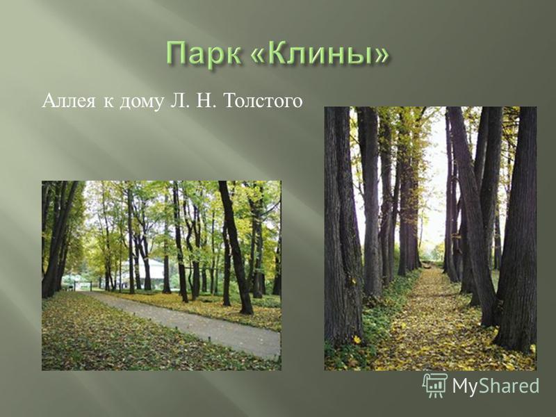 Аллея к дому Л. Н. Толстого