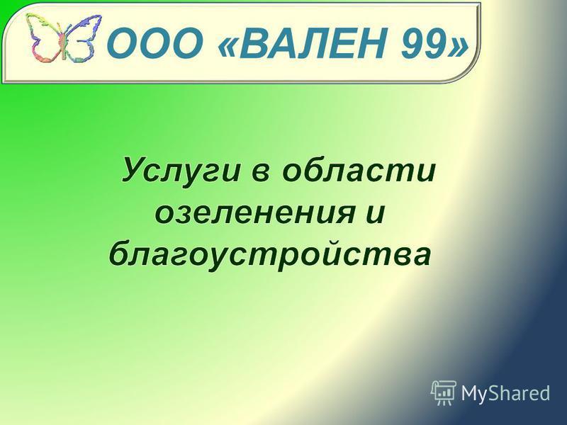 ООО «ВАЛЕН 99»
