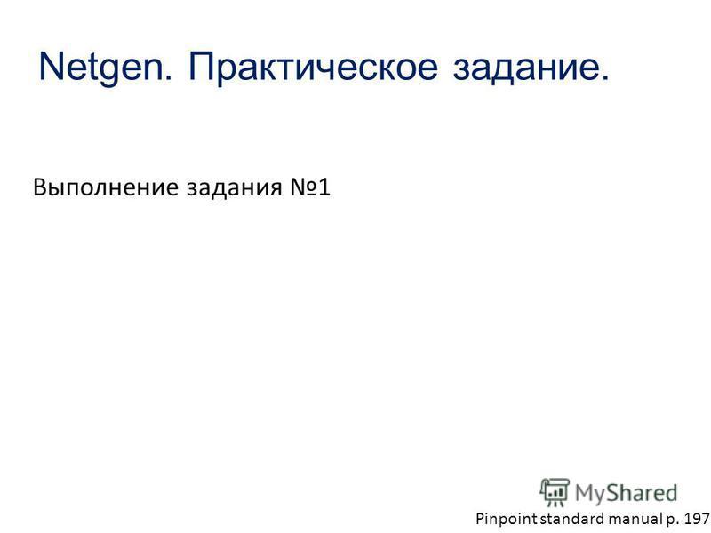 Netgen. Практическое задание. Выполнение задания 1 Pinpoint standard manual p. 197