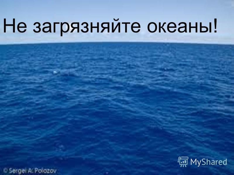 11.12.12 Не загрязняйте океаны!
