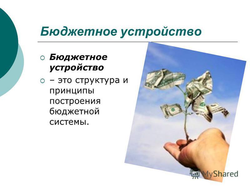 Бюджетное устройство – это структура и принципы построения бюджетной системы.