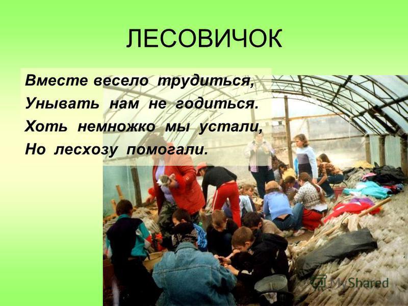 ЛЕСОВИЧОК Вместе весело трудиться, Унывать нам не годиться. Хоть немножко мы устали, Но лесхозу помогали.