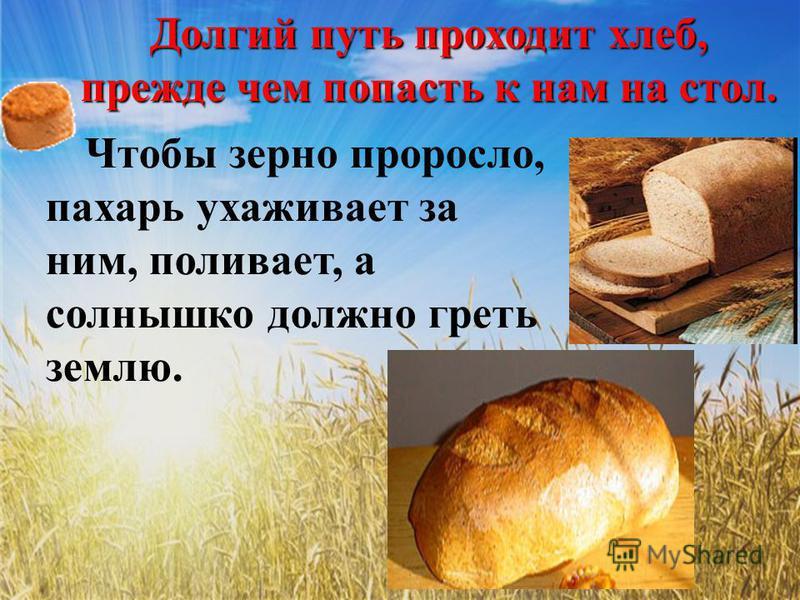 Долгий путь проходит хлеб, прежде чем попасть к нам на стол. Чтобы зерно проросло, пахарь ухаживает за ним, поливает, а солнышко должно греть землю.