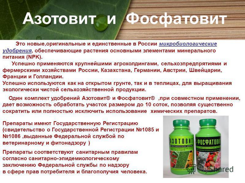 Азотовит и Фосфатовит Это новые,оригинальные и единственные в России микробиологические удобрения, обеспечивающие растения основными элементами минерального питания (NPK). Успешно применяются крупнейшими агрохолдингами, сельхозпредприятиями и фермерс