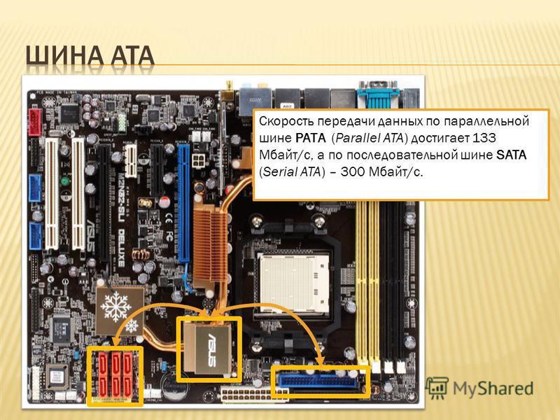 Скорость передачи данных по параллельной шине РАТA (Parallel ATA) достигает 133 Мбайт/с, а по последовательной шине SATA (Serial ATA) – 300 Мбайт/с.