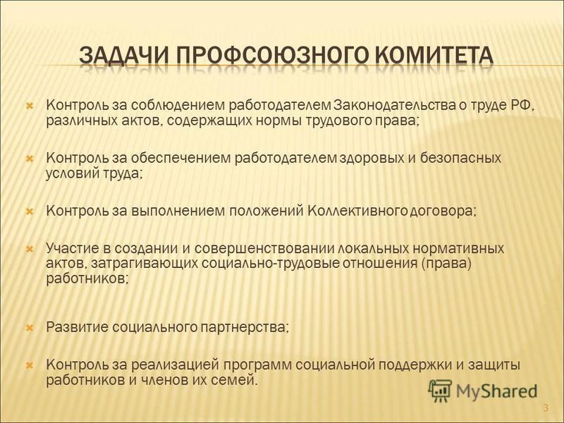 Контроль за соблюдением работодателем Законодательства о труде РФ, различных актов, содержащих нормы трудового права; Контроль за обеспечением работодателем здоровых и безопасных условий труда; Контроль за выполнением положений Коллективного договора