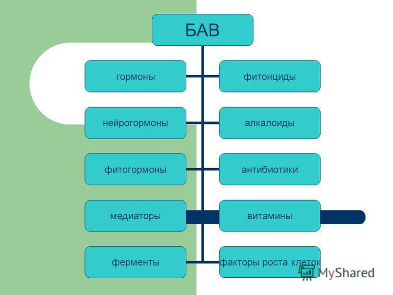 БАВ гормоны фитонциды нейрогормоны алкалоиды фитогормоны антибиотики медиаторы витамины ферменты факторы роста клеток