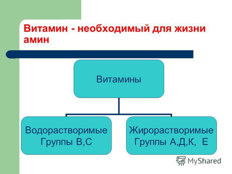 Витамин - необходимый для жизни амин Витамины Водорастворимые Группы В,С Жирорастворимые Группы А,Д,К, Е