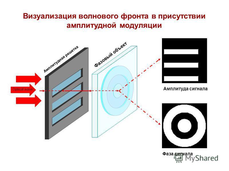 Визуализация волнового фронта в присутствии амплитудной модуляции Амплитуда сигнала Фаза сигнала Optical wave Амплитудная решетка Фазовый объект