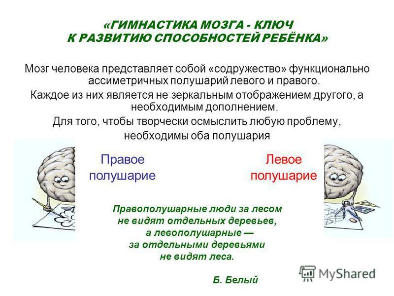 «ГИМНАСТИКА МОЗГА - КЛЮЧ К РАЗВИТИЮ СПОСОБНОСТЕЙ РЕБЁНКА» Мозг человека представляет собой «содружество» функционально ассиметричных полушарий левого и правого. Каждое из них является не зеркальным отображением другого, а необходимым дополнением. Для
