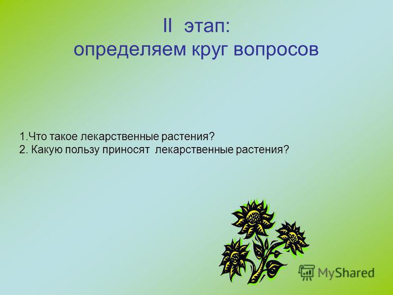II этап: определяем круг вопросов 1. Что такое лекарственные растения? 2. Какую пользу приносят лекарственные растения?