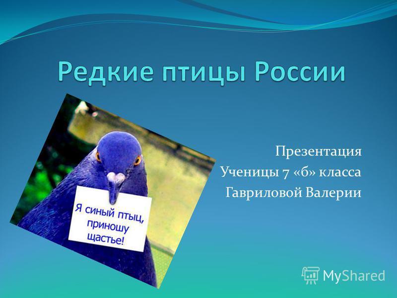 Презентация Ученицы 7 «б» класса Гавриловой Валерии